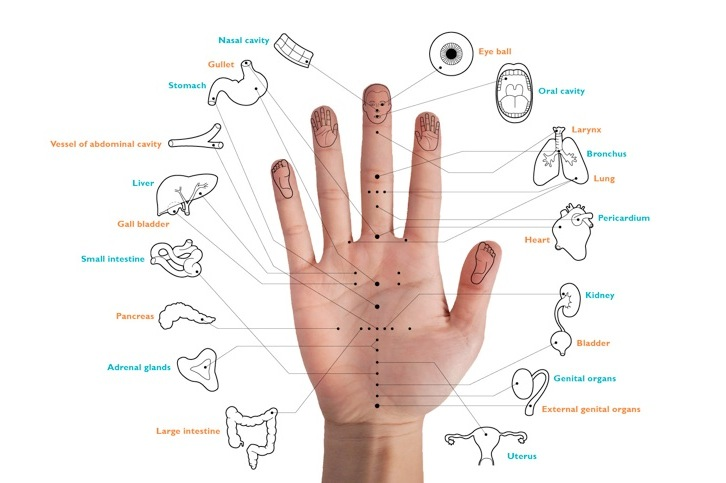 an overview of the chinese medical practice of acupuncture Osteoarthritis and chinese medicine: an overview of theories and evidence  chinese medicine, acupuncture, chinese herbal medicine  the practice of chinese .